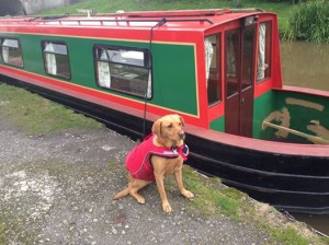 pet friendly canal holiday